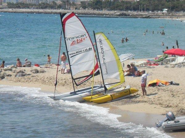 第三届全球MINICAT帆友见面交流会将在6月24日-26日举行