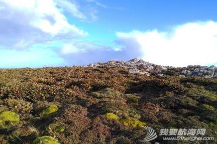 我们在南大西洋的福克兰群岛(英属)也称马尔维纳斯群岛,这里也有企鹅。 8.png