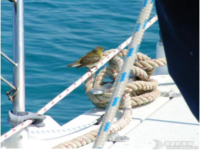 百慕大,北大西洋,墨西哥湾,佛罗里达,马拉松 最后三个月的航海经历很不一样,境遇变了,心情比较复杂。---《大西洋航游760天》 1.png