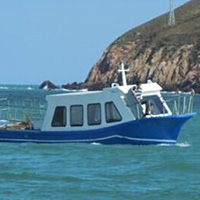 有限公司,聚乙烯,当地人,中国,浙江 渔船制造新突破——聚乙烯船艇 0.jpg