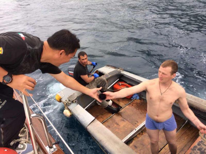 离开海参崴,钓了好多鱼 61545