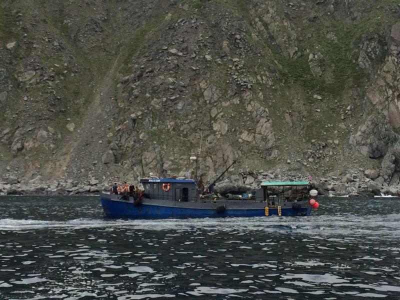 离开海参崴,钓了好多鱼 61553