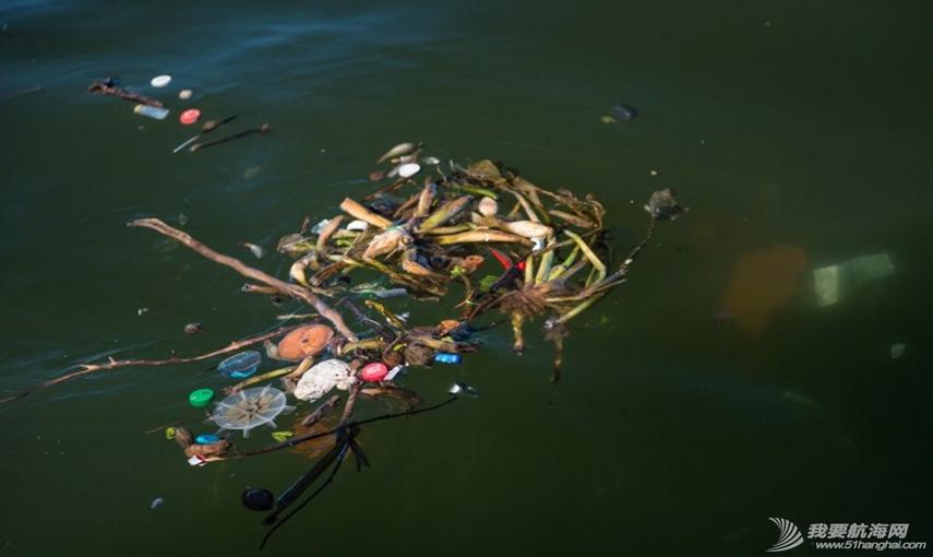 里约国际帆船赛,水质污染问题 里约奥运会的首个测试赛--2014里约国际帆船赛即将开赛,但水质污染问题再度成为焦点。 7.png
