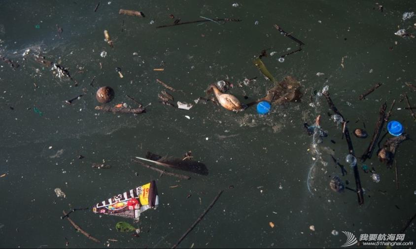 里约国际帆船赛,水质污染问题 里约奥运会的首个测试赛--2014里约国际帆船赛即将开赛,但水质污染问题再度成为焦点。 9.png