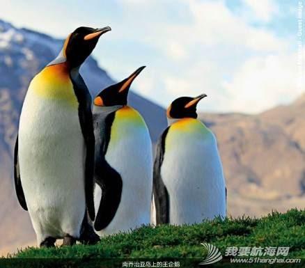 南北极高端定制旅游 203555kgexrw6xw3fs2x3e.jpg