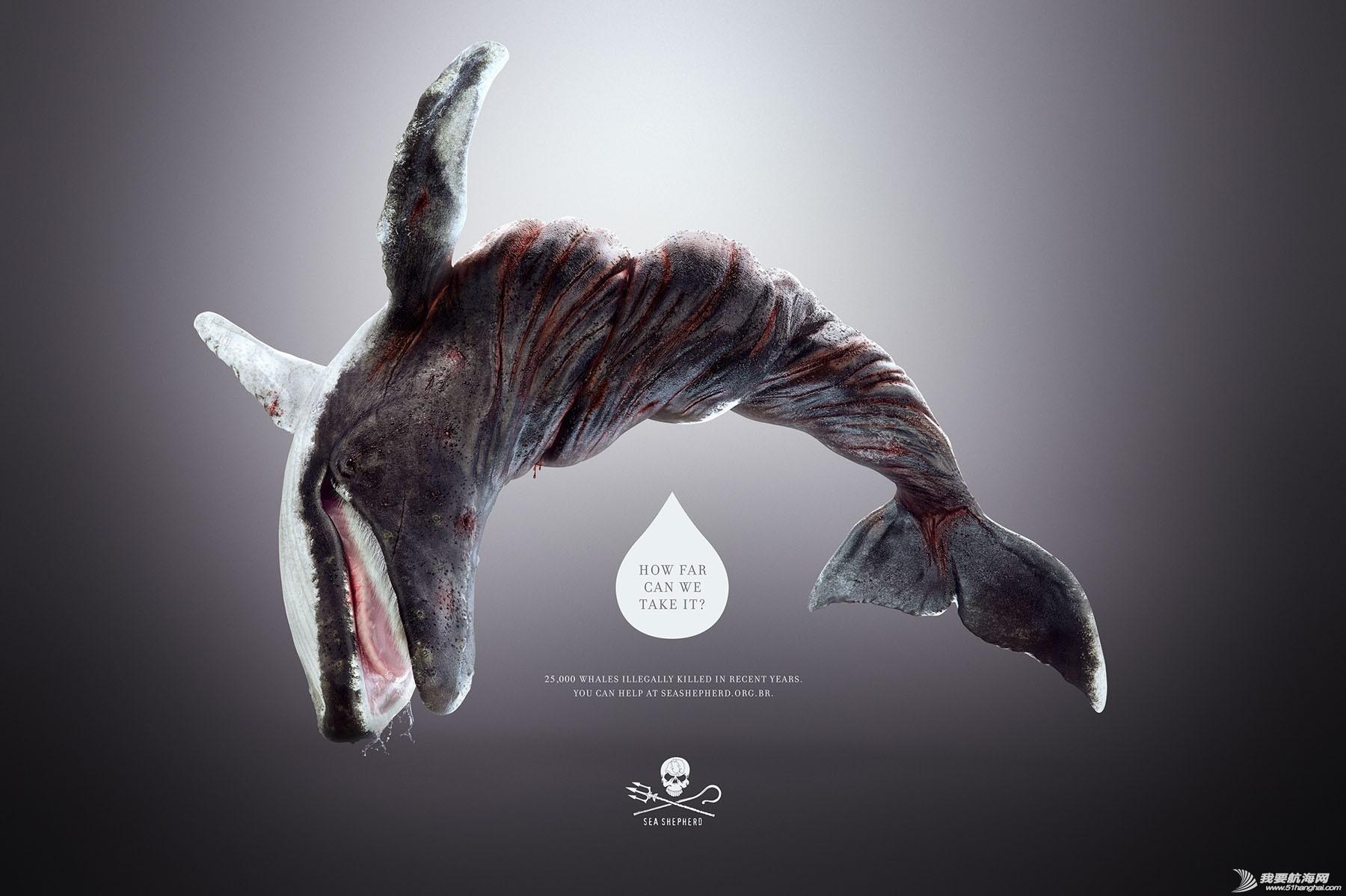 平面设计,海洋,动物 扭曲的海洋、生物 20130529041957620.jpg
