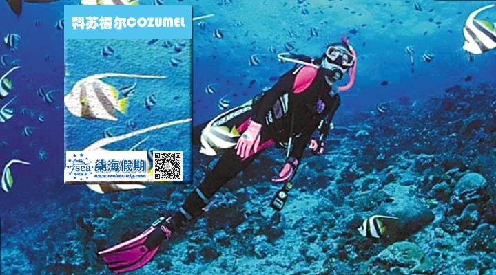 海南省,爱好者,拉力赛,2014,大海 美国东海岸+加勒比海14天豪华邮轮 0.jpg