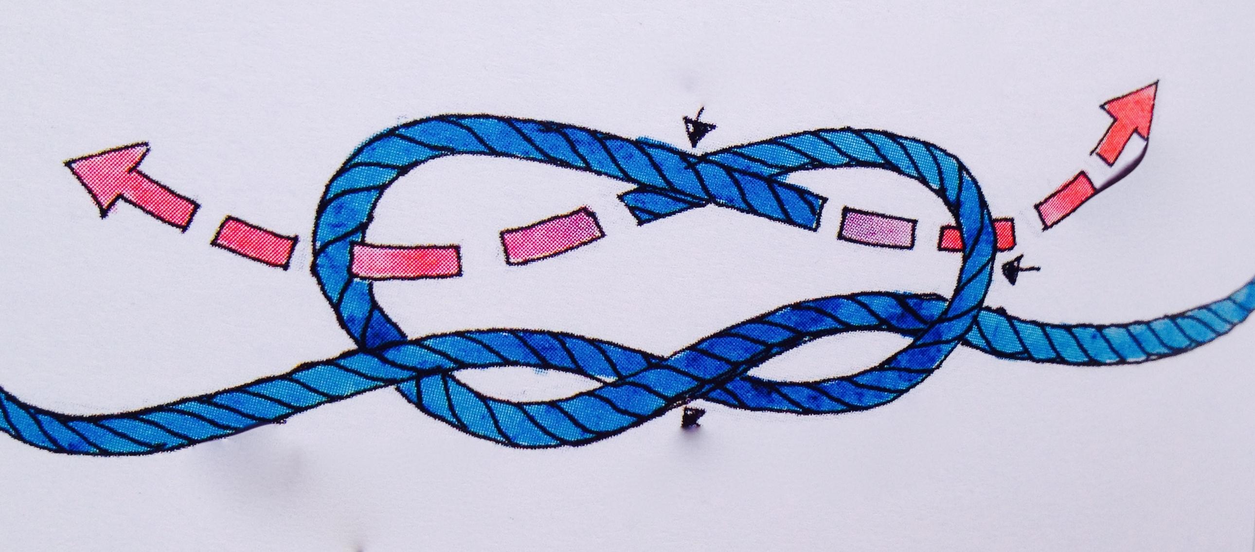 徐莉佳,帆船,绳结打法 三个驾驶帆船就最常用的绳结打法与用途----徐莉佳漫画 5b.jpg