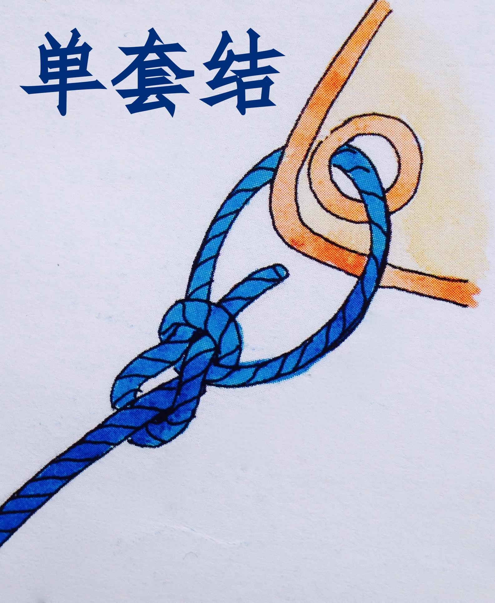 徐莉佳,帆船,绳结打法 三个驾驶帆船就最常用的绳结打法与用途----徐莉佳漫画 5h.jpg