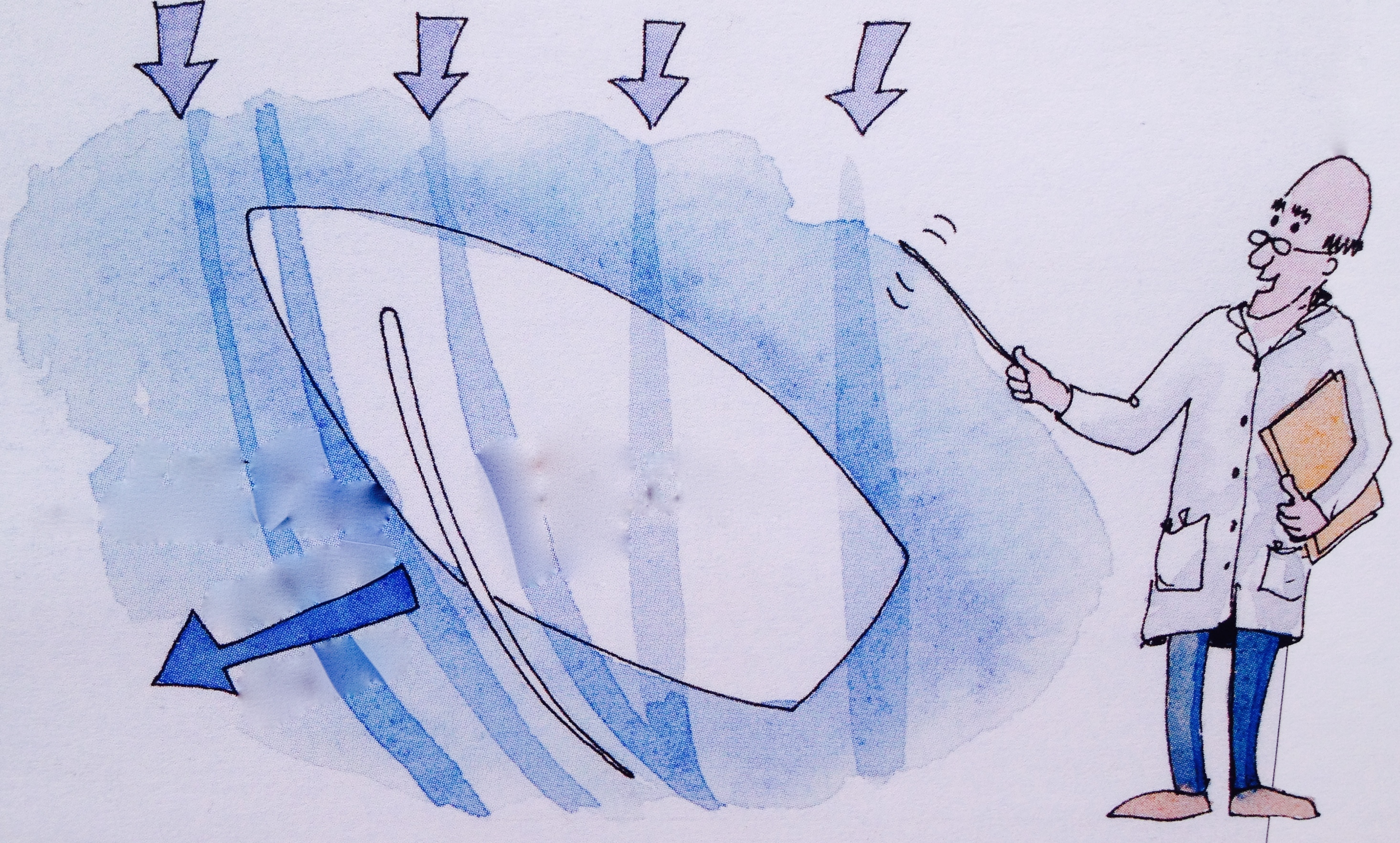 上风,迎风航线,徐莉佳,帆船,如何 帆船是如何前进的?这里我们需要讲些理论知识咯---徐莉佳漫画 6a风的原理和航行角度.jpg