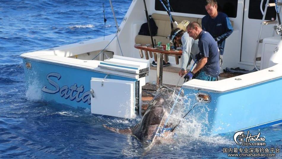 佛罗里达 17岁少年佛罗里达捕获314公斤剑鱼 102301svvdpin1p19p9nid.jpg