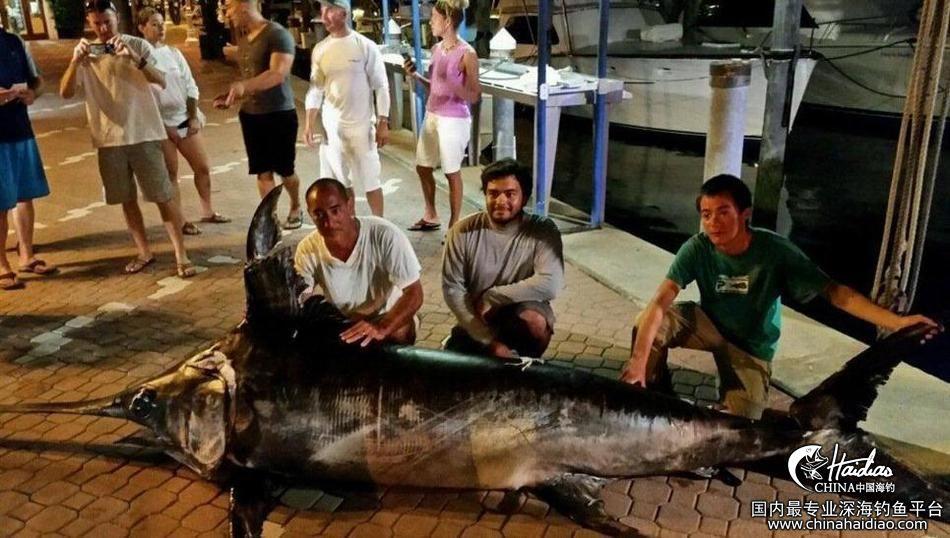 佛罗里达 17岁少年佛罗里达捕获314公斤剑鱼 102302ljhjz8p44y0hpd2d.jpg