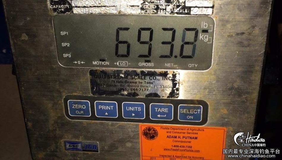 佛罗里达 17岁少年佛罗里达捕获314公斤剑鱼 102302ii5zdaizsmlus4df.jpg