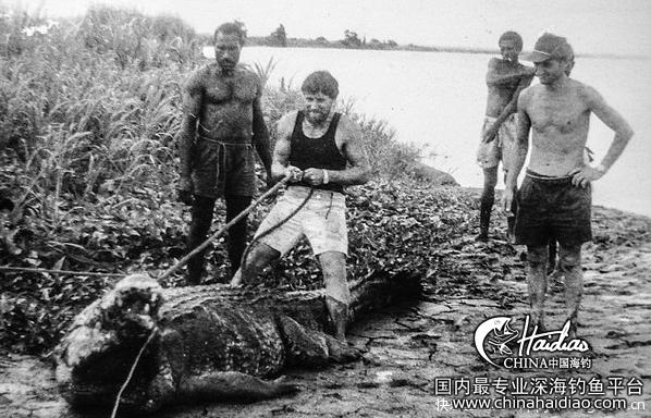 世界最大,澳洲 澳洲84岁猎手与世界最大鳄鱼惊险生活30年 101730kzezlthohktmhqpq.jpg