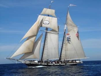 太平公主,圣地亚哥,帆船 圣地亚哥以航海界的最高礼节欢迎太平公主号的几条帆船 3.jpg