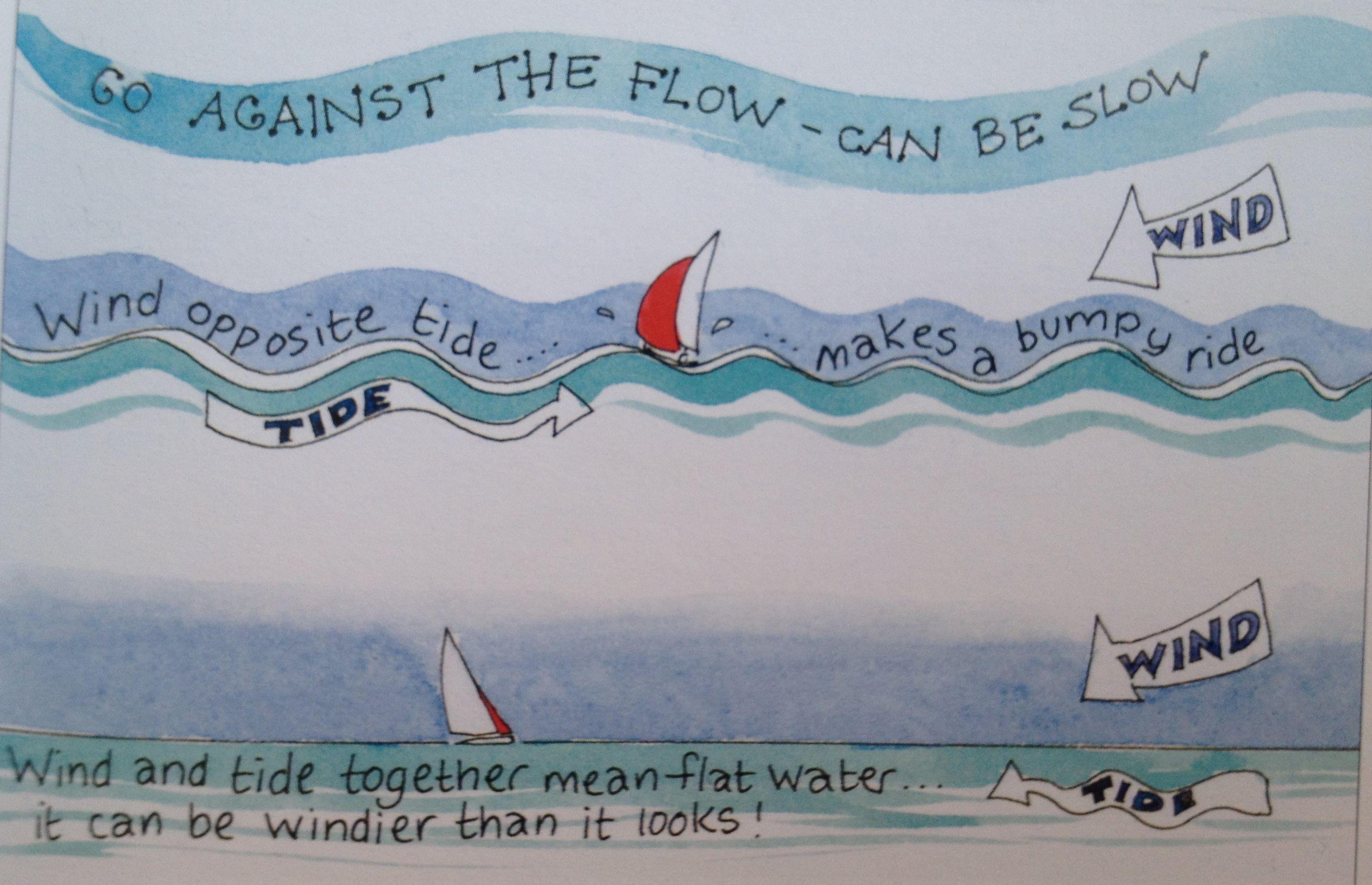 图片,测量,影响 怎么测量出流水的方向与速度?流水有什么作用?又有哪些影响呢? 42d风流对水面的影响.jpg