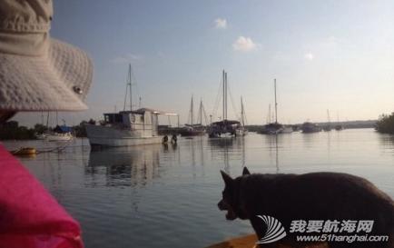 办公室,电视台,工作服,正式工,中国 11月9日,勘察停船的河道,准备买Young的mooring side。 2.png