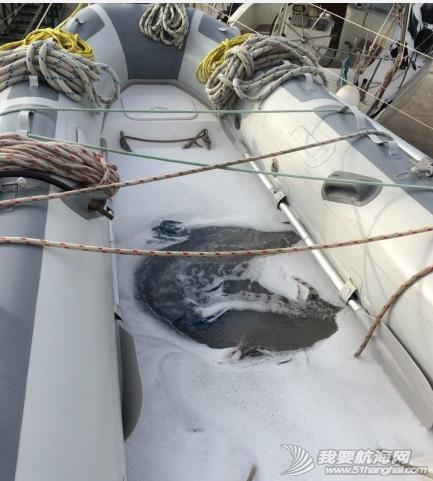 这几天我们把桅杆上的绳索都卸下来,给绳索一个泡泡浴。 2.png