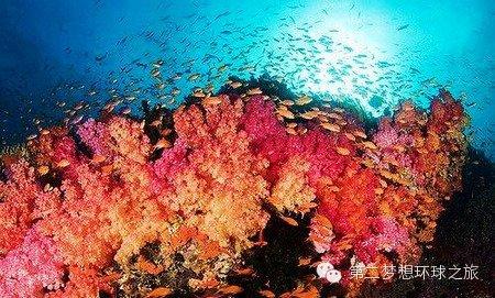 西南太平洋,夏威夷,飓风袭击,小孩子,共和国 第二梦想号:未知的斐济 0.jpg