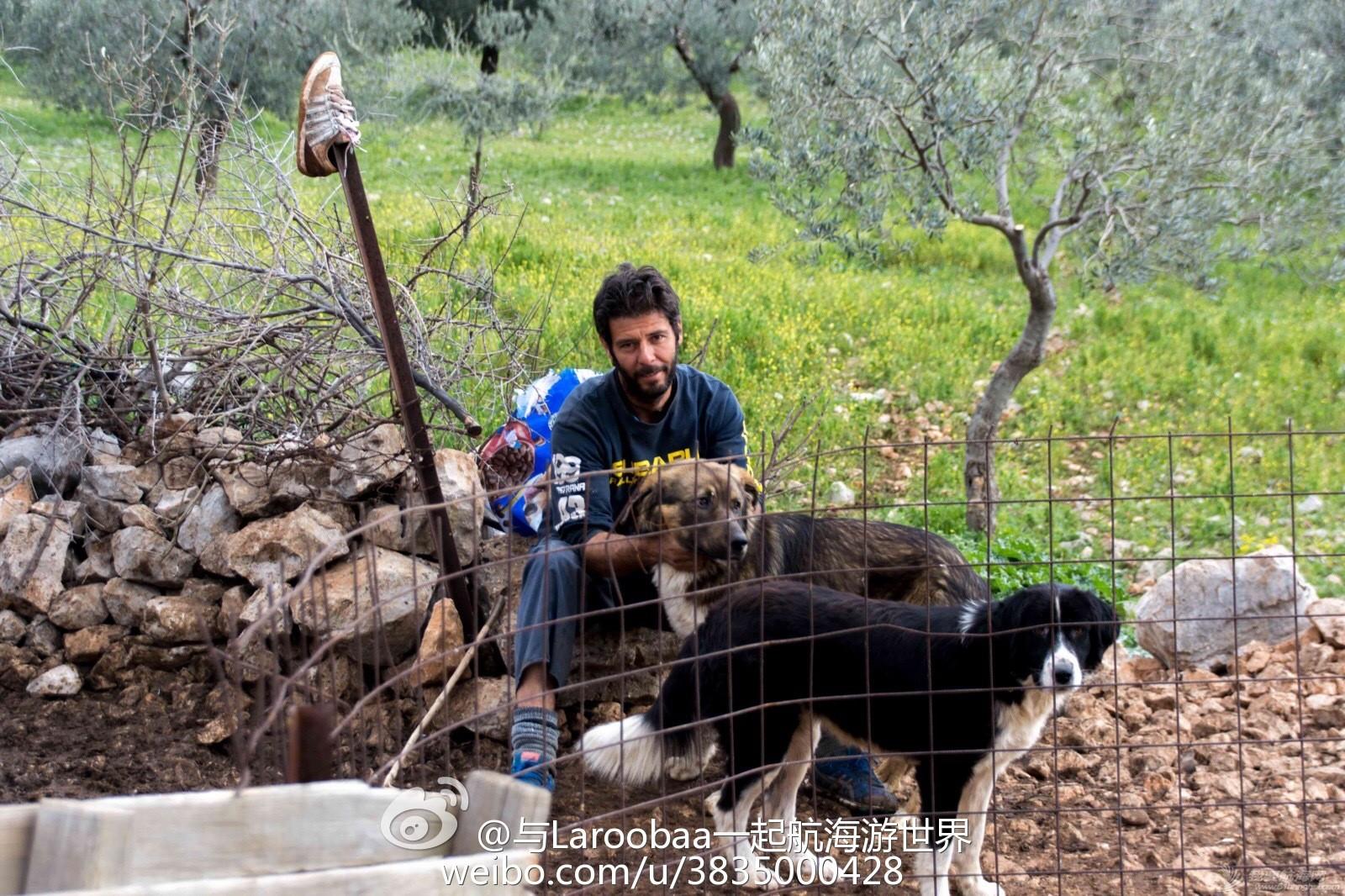 希腊,牧羊犬,宠物狗,牧羊人,石灰岩 参观希腊著名的迪迪玛教堂岩洞遭遇牧羊犬 e495766cjw1eq74sjlrznj218g0tmtsa.jpg
