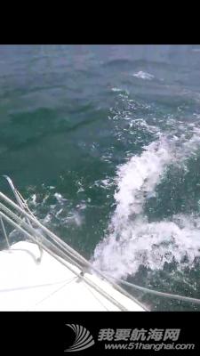 大连海事,大学,帆船 大连海事大学帆船队2015年第六次出海训练 103121ewwg3vbb3e83wj32.jpg
