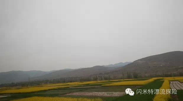 黄河,漂流,独木舟 【连载】黄河陌日漂流--闪米特水眼看世界 2-油菜花开.jpg