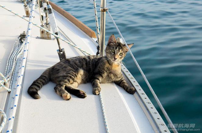 加勒比海,欧洲风格,地中海,Jessica,保险公司 美国夫妇辞职看世界 带猫驾船游16国 3.png