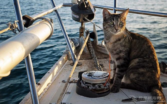 加勒比海,欧洲风格,地中海,Jessica,保险公司 美国夫妇辞职看世界 带猫驾船游16国 13.png