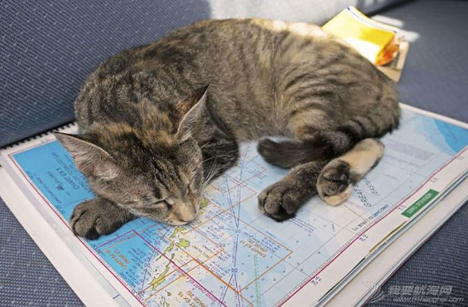 加勒比海,欧洲风格,地中海,Jessica,保险公司 美国夫妇辞职看世界 带猫驾船游16国 19.png