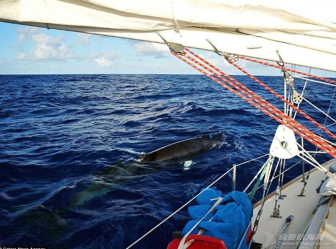 加勒比海,欧洲风格,地中海,Jessica,保险公司 美国夫妇辞职看世界 带猫驾船游16国 23.png