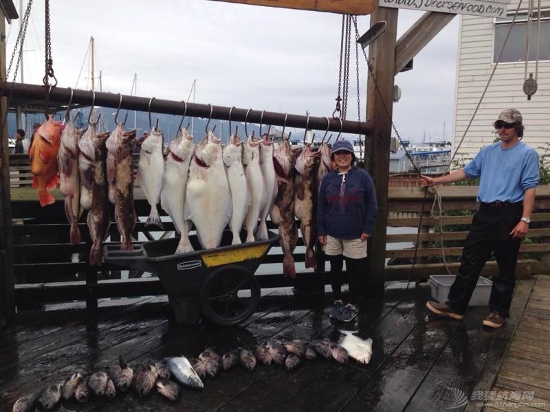 北美13姨连载-003-好多鱼的阿拉斯加浪漫小港Seward 052833bzq6n6nzikn5qnbk.jpg
