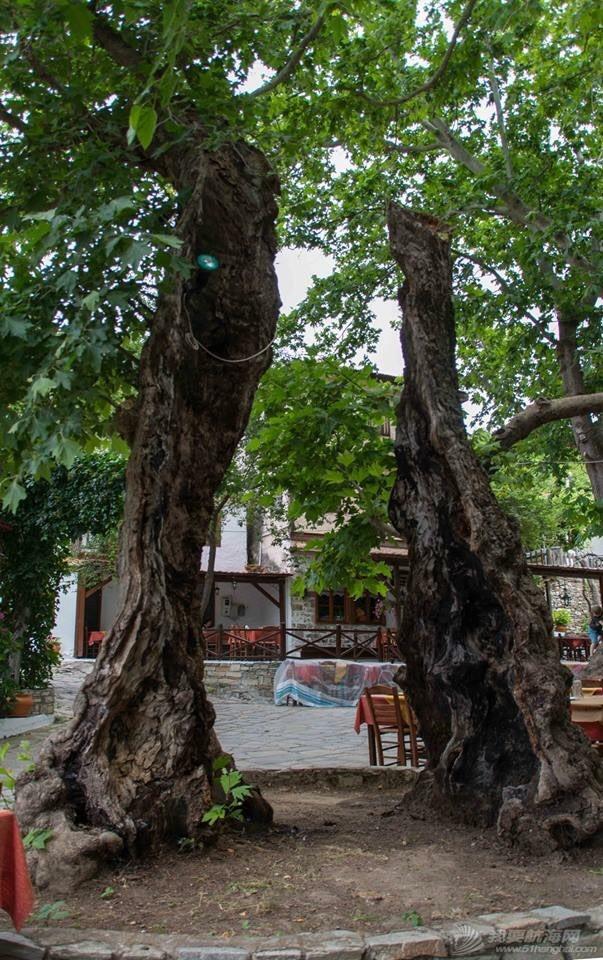 Thasos岛自驾游 024541sg2vgghf24rbhl4s.jpg