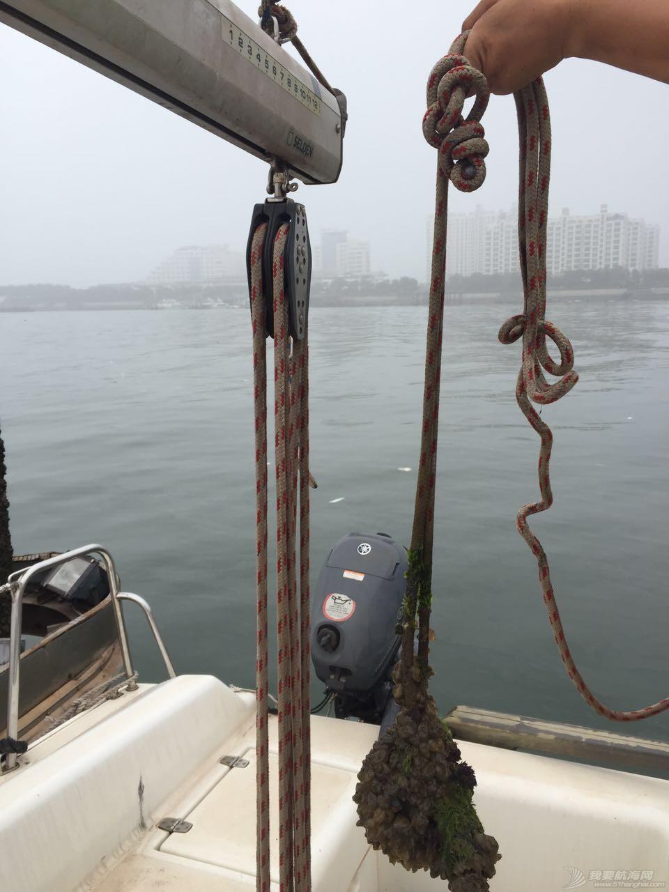 志愿者,帆船,日记,日照 【公益航海志愿者日记@日照】Day14-渔人节快乐,所有船的内舱清理工作全部完成 7号主帆缭绳2.jpg