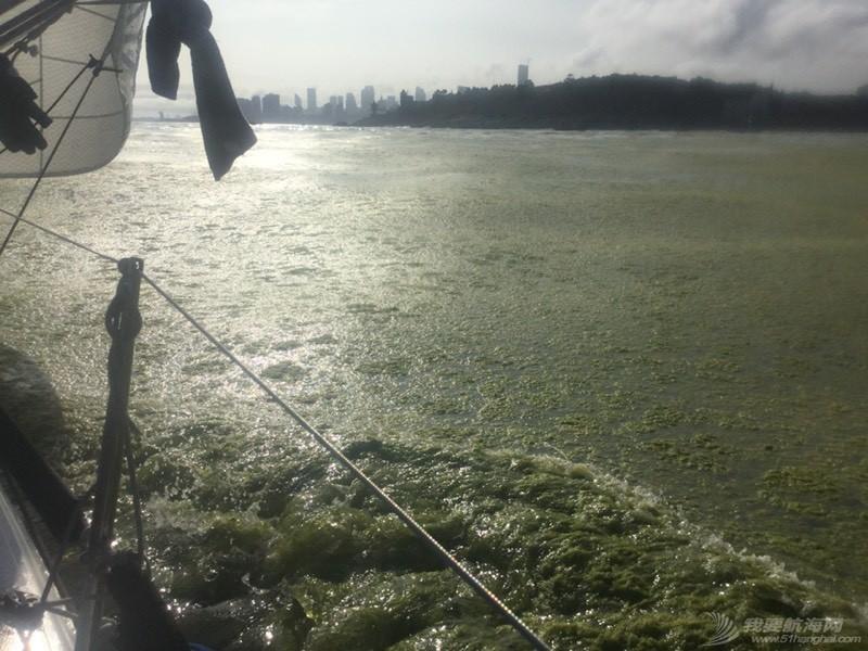 青岛,帆船,崂山 8.5米龙骨帆船的近岸航行,青岛到崂山头 224618hym60ahg0gtx0agg.jpg