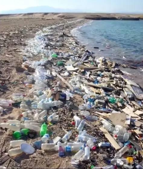 夏威夷,矿泉水瓶,海天一色,塑料袋,下水道 他才21岁,却要改变这个世界,因为大海被人弄脏了 47250048e066fe2b409c180fbb1fa720.jpg