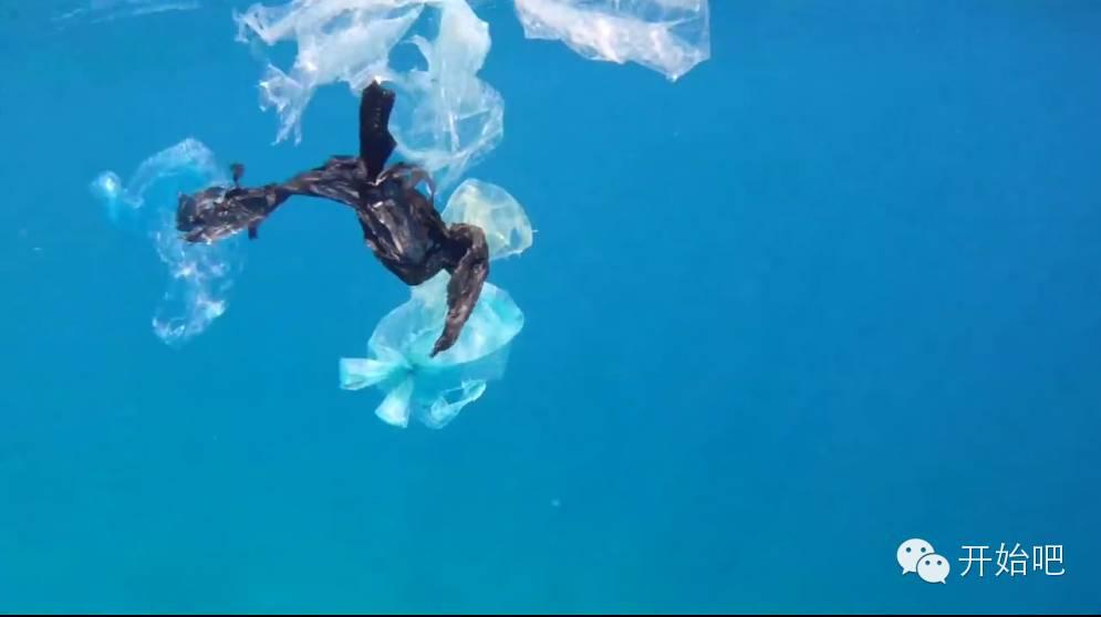 夏威夷,矿泉水瓶,海天一色,塑料袋,下水道 他才21岁,却要改变这个世界,因为大海被人弄脏了 9e9491b65ac35b1dd7256acd6592a290.jpg