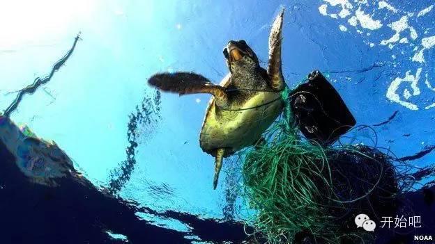 夏威夷,矿泉水瓶,海天一色,塑料袋,下水道 他才21岁,却要改变这个世界,因为大海被人弄脏了 ff0e7c594f16b49790f65c78610a2a30.jpg