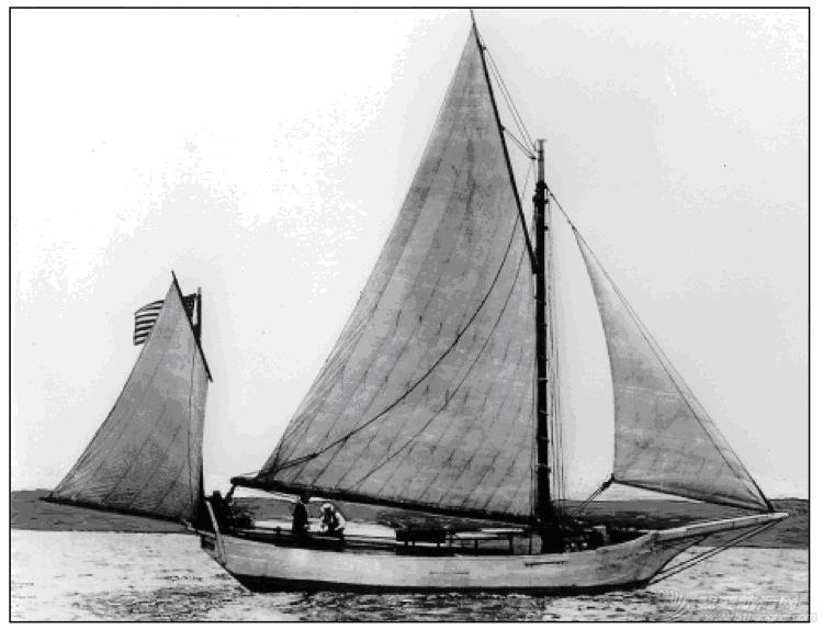 历史 帆译:巡航船的历史 97374562cb97fe4037.png