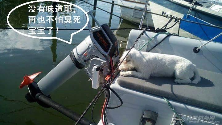 Travel,螺旋桨,电池,电机,用户 『自卖自夸帖』得心应手的Torqeedo电动舷外机 3.JPG