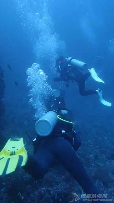 突发:一名中国女潜水员在斯米兰船宿中丧生 22f760bb67a22d02bd8936aa96045477.jpg