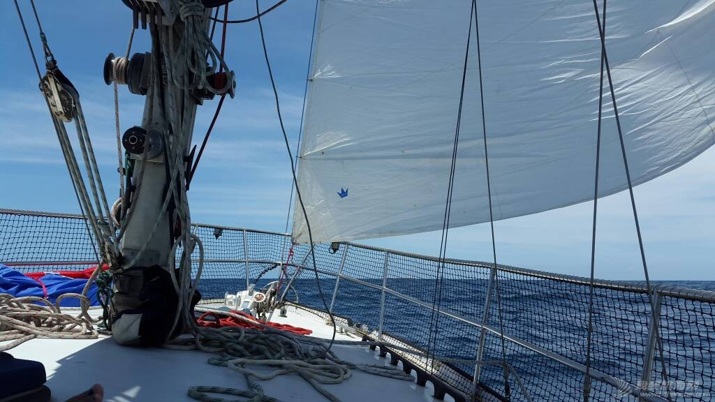新年出海- 我们的进步 144354xwct4h6h64h9nh9f.jpg