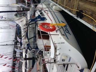 温哥华,国际 温哥华国际船展第一天! 出海体验的船