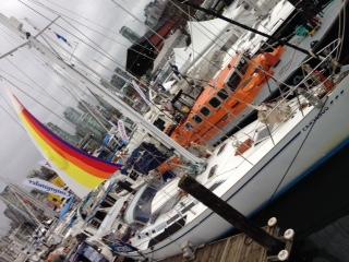 温哥华,国际 温哥华国际船展第一天! 好多啊