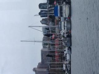 温哥华,国际 温哥华国际船展第一天! 码头