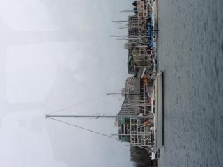 温哥华,国际 温哥华国际船展第一天! 生活