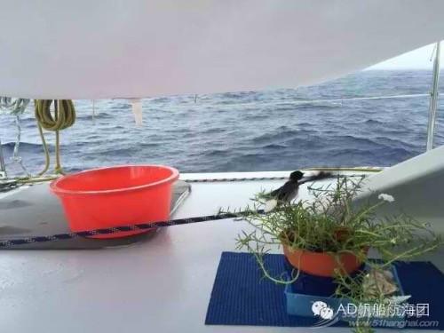 AD航海团 帆船游记11:二人世界游走神秘婆罗洲 image.jpg