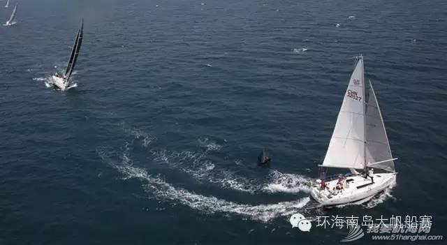 团队建设,海南岛,爱好者,赞助商,中国 七年成长愈显成熟之美 461c613cb1c5fe95edbda490bb196e96.jpg