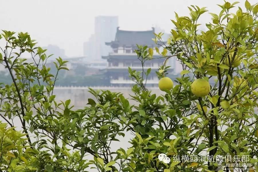 """湘江上百舸争流!相约""""中国第一洲""""-橘子洲 de2b6b87f8a89b8091dd51acedcb6b20.jpg"""