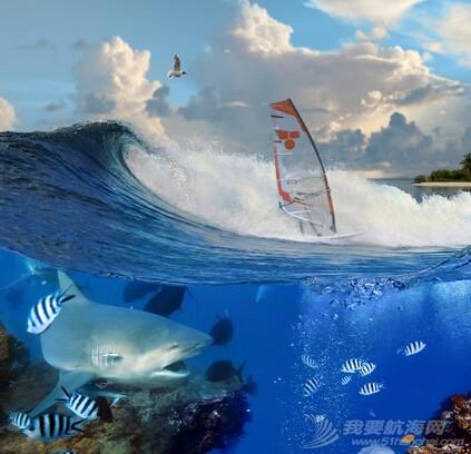 航海,鲨鱼 最危险的事件之一——鲨鱼的袭来 QQ截图20160402093233.jpg
