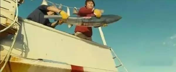拯救鲨鱼从我做起!没有买卖,就没有杀害!蓝途邀你一起行动! 433a8493628f9e75b04be45095d0c1a5.jpg